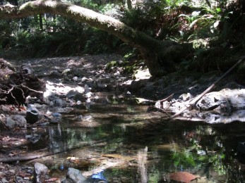 probably a babbling brook (but not in the summer)